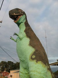 This dinosaur stands at 18` tall.