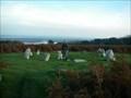 Image for Birkrigg Common stone circle,Bardsea,Cumbria England.