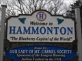 """Image for """"The Blueberry Capital of the World"""" (Westbound) - Hammonton, NJ"""