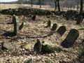 Image for židovský hrbitov / the Jewish cemetery, Pavlov, Czech republic