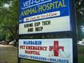 Image for Vet-I-Care Animal Hospital - Jacksonville, Florida