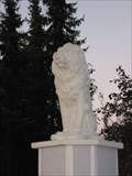 Image for Lions Burgdorf