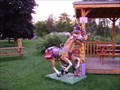 Image for Horse - Barrie, Ontario, Canada