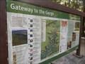 Image for Carnarvon Gorge Walk Trackhead - Carnarvon National Park, Injune, QLD