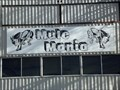 Image for Mule Mania - Muleshoe, TX