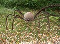 Image for JuRustic Spider - Marshfield, WI