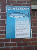 Image for Chinook Salmon  -  Monterey, CA
