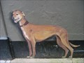 Image for Henry the Greyhound - Bell Lane, Poole, Dorset, UK