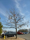 Image for Agawam High School Shoe Tree - Agawam, MA