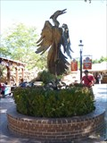 Image for Phoenix Rising From the Ashes - Albuquerque, New Mexico