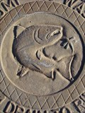 Image for Salmon and Dragonfly Storm Drain Cover, Wenatchee, WA