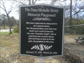 Image for Dana Michelle Storey memorial playground - Saluda SC