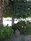 Image for Kimaree McDonald - Rodeo, CA