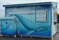 Image for Venture Quest Kayak - Santa Cruz, CA
