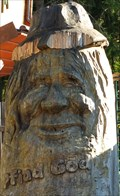 Image for Man's face with cap at the Waldwipfelweg, St. Englmar - Bavaria / Germany