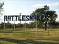 Image for Rattelsnakes - Satellite Oddity - McLean, Texas. USA.