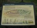 Image for Badbury Rings Flora - Dorset, UK