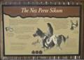 Image for The Nez Perce Sikum