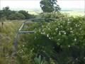 Image for Mount Peel, Drayton, Qld