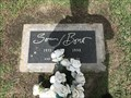 Image for Sonny Bono's Grave - Cathedral City, CA