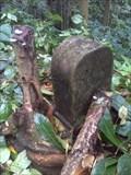 Image for EN 1 Km Unknown - Sao Tome and Principe