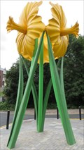 Image for Giant Daffodil's - Bargoed, Caerphilly County Borough, Wales