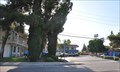 Image for Motel 6 Bakersfield Convention Center #1322