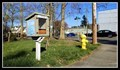 Image for Little Free Library 13237 — Renton, WA