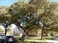 Image for Log Cabin Oaks - San Marcos TX