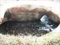 Image for Devil's Punch Bowl - Otter Rock., OR