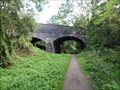 Image for Stafford Road Bridge Over Stafford To Newport Greenway - Haughton, UK