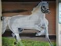 Image for Horse - Ourense, Galicia, España