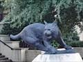 Image for Bobcat, Texas State University - San Marcos, TX