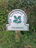 Image for Strangles - Cornwall