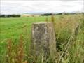 Image for Blair Muir Triangulation Pillar - Angus, Scotland.