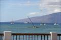 Image for The Dolphin - Lahaina, Maui