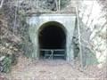 Image for Indigo Tunnel