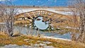 Image for Creston Valley Wildlife Management Area - Creston, BC