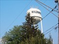 Image for Wildwood Illinois Water Tower