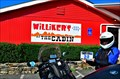 Image for Willikers BBQ - Shrewsbury MA