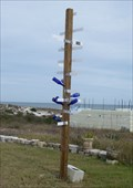 Image for Direction Arrows Bottle Tree - American Beach, FL