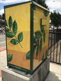 Image for Leaf Box - San Lorenzo, CA