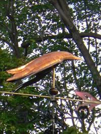 Photo du poisson volant et une partie de la flèche et des points cardinaux.  Photo of flying fish and a part of the arrow and the cardinal points.