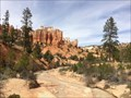 Image for Water Canyon - Scenic Byway 12 - Bryce, UT