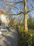 Image for Platanenallee - Prinzregentenufer - Nurnberg, BY, Germany