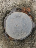 Image for 101 L.C.F. - Unknown Mark