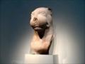 Image for Indian Lion  -  Washington, DC