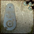 Image for Findings Pavement Trail (Birmingham) - Letter G
