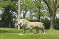 Image for Lion - Troy, MO