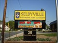 Image for Selbyville, Delaware Time and Date Sign